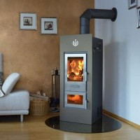 Wood Burning Stoves with Flue