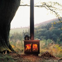 Forest Wood Burning Stoves
